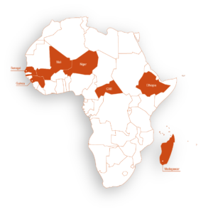Our projects in Africa