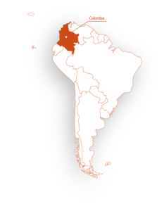 Our project in South America